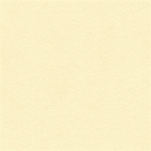 Picture of Vanilla Cream Solid Core Cardstock